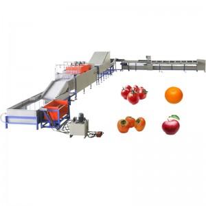 Rentar les fruites depilació Màquina de qualificació