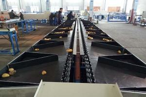 Double Line Electronic Fruit Grading Machine