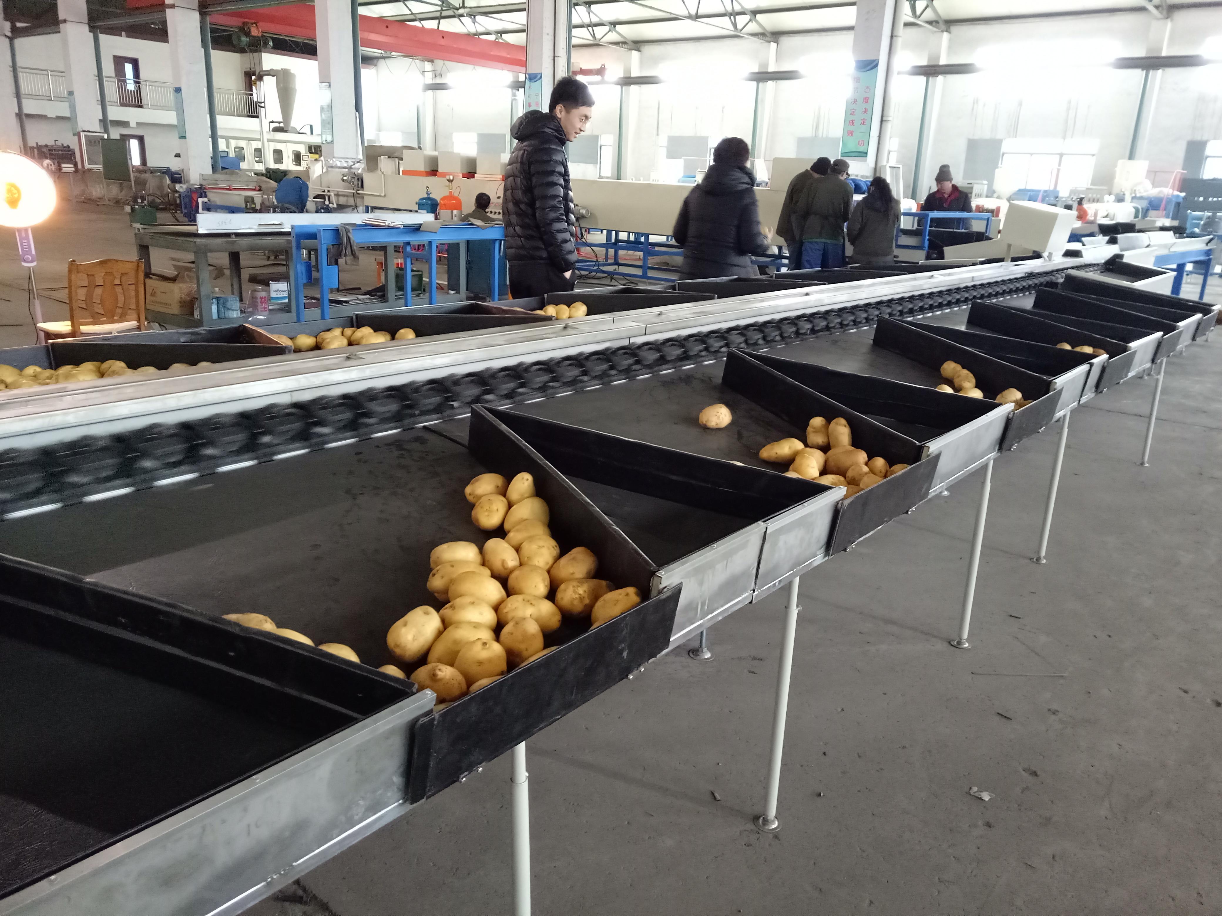 Hot Sale for Vacuum Forming Machine For Plastic Trays - ElectronicFruitGradingMachine – Fushi Packing